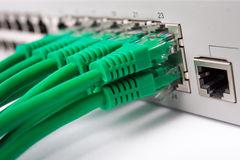 lan-switch-29618744